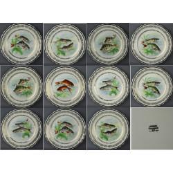 Assiettes service à poisson RP porcelaine de  Limoges anciennes