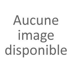 Paire de toupies en bois tourné XIX-XXème